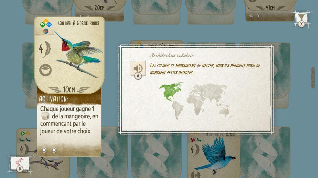 """Capture d'écran de la rubrique Oiseaux de Wingspan Switch. On y voit la carte du Colibri à Gorge Rubis. Sa description montre qu'il vit en Amérique du Nord, et sa description dit """"Les colibris se nourrissent de nectar, mais ils mangent aussi de nombreux petits insectes"""""""